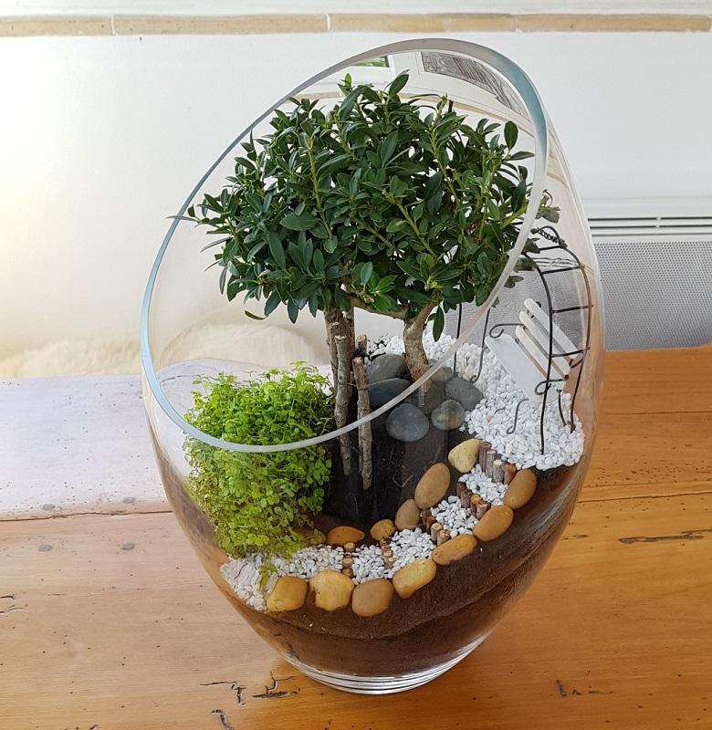 http://www.latelierderosabel.com/medias/images/bonsai-elise-3.jpg
