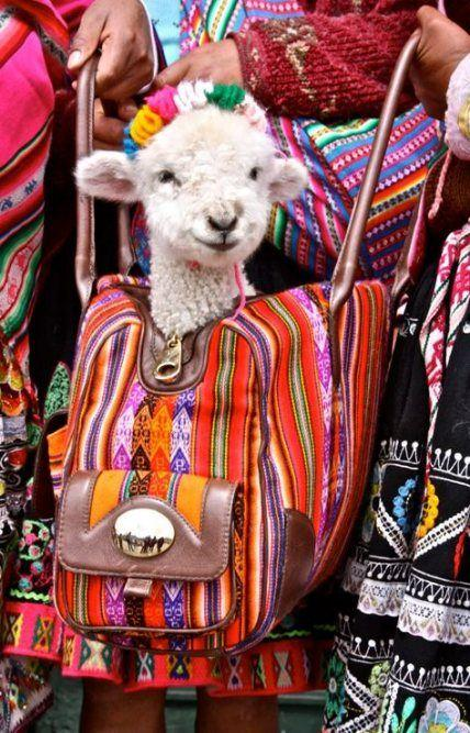 http://www.latelierderosabel.com/medias/images/couleurs-peruviennes-et-nepalaises3.jpg