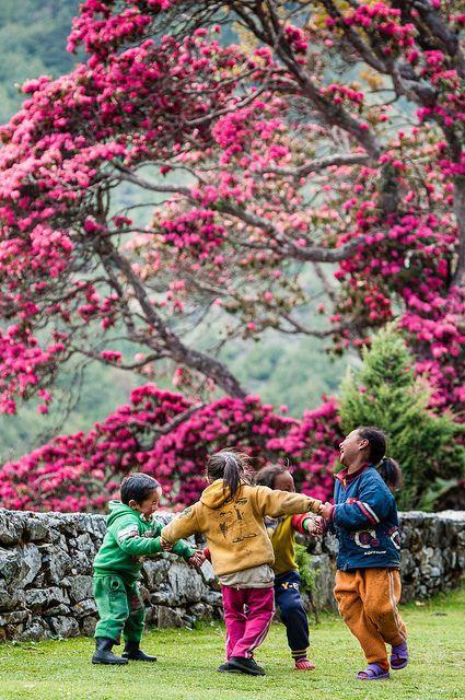 http://www.latelierderosabel.com/medias/images/couleurs-peruviennes-et-nepalaises8.jpg