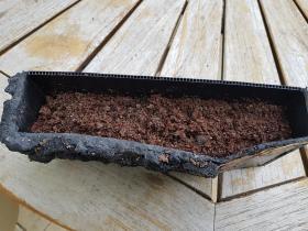 Et sur l'ouate, du substrat nourricier pour plantes d'aquarium