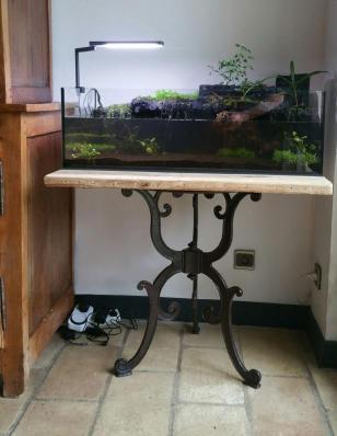 Le riparium sur sa petite table en fonte