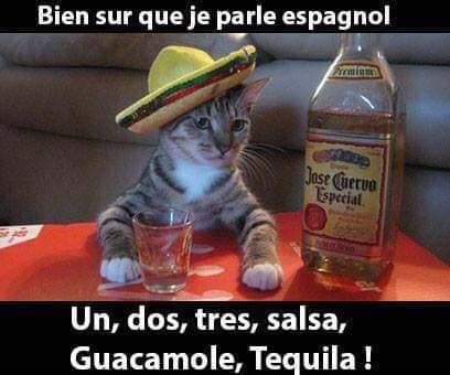 http://www.latelierderosabel.com/medias/images/salsa.jpg