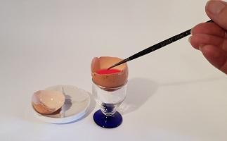 Fabriquons nos peinture : La peinture à l'œuf ou tempera